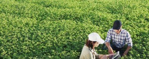 Jornada Virtual del Sector Agroalimentario